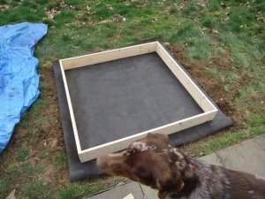 Sustainable Craig Square Foot Garden Frame with weed matting