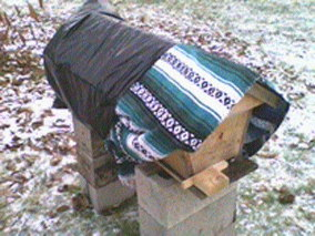 bee hive with blanket