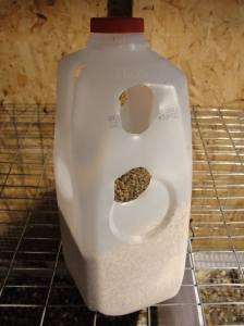 Quail Feeder Upright for Refill