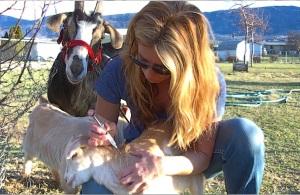 Julie immunization of baby goats